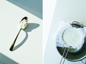 Homemade Ricotta // not without salt